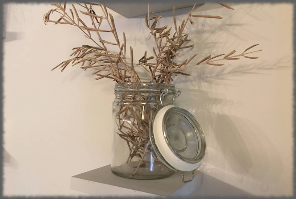 Bed and Breakfast Avignon - Les Olivades - Olivier